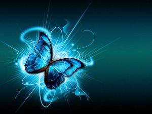 414313__blue-butterfly_p